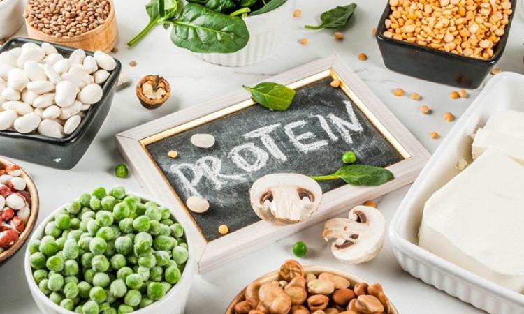 Sumber Protein Yang Baik Untuk Anak Selain Daging